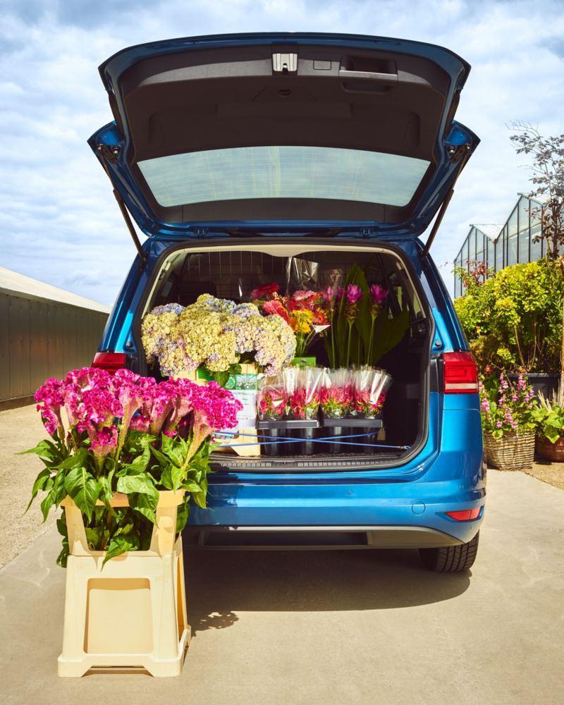 Blick in den offenen Kofferraum des Touran, er ist mit gerade gekauften Blumen gefüllt.