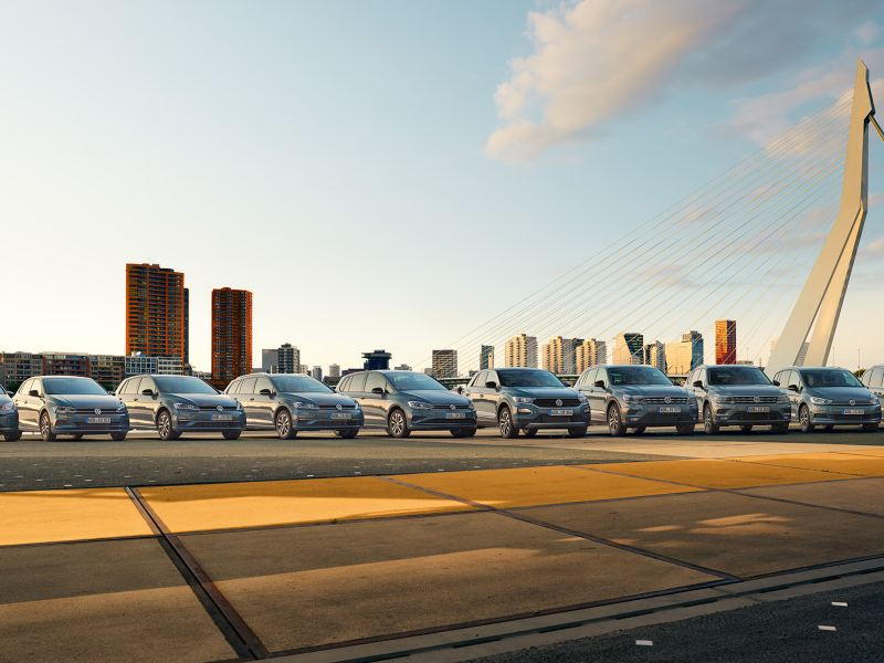 Mehrere VW-Autos stehen nebeneinander auf einer Brücke. Im Hintergrund das Panorama einer Stadt mit Hochhäusern und blauer Himmel.