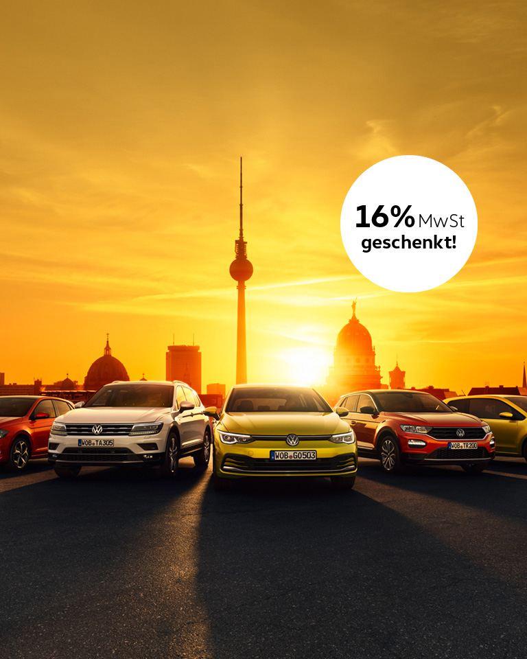 VW Fahrzeuge Panorama