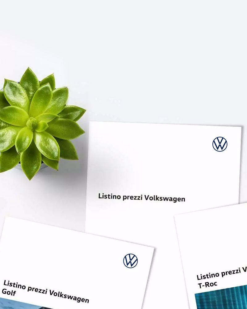 parte di alcuni Listini Volkswagen visti dall'alto vicini ad una pianta grassa