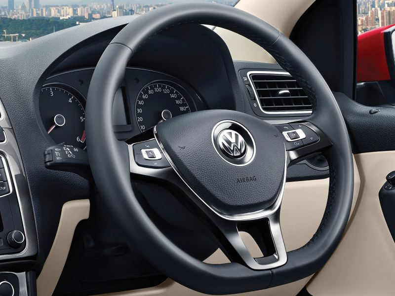 Multifunction steering control