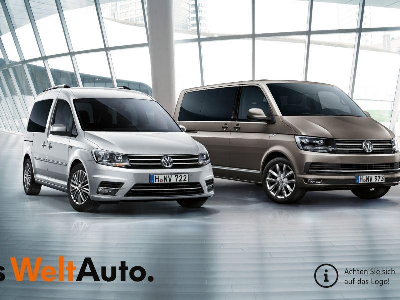 VW Nutzfahrzeuge Occasionen
