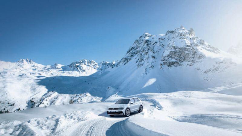 VW na zimę