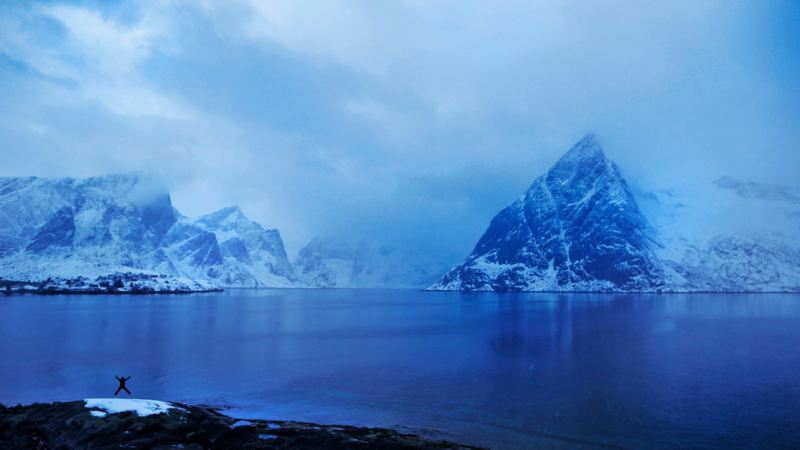 Krysshopp vid Lofoten