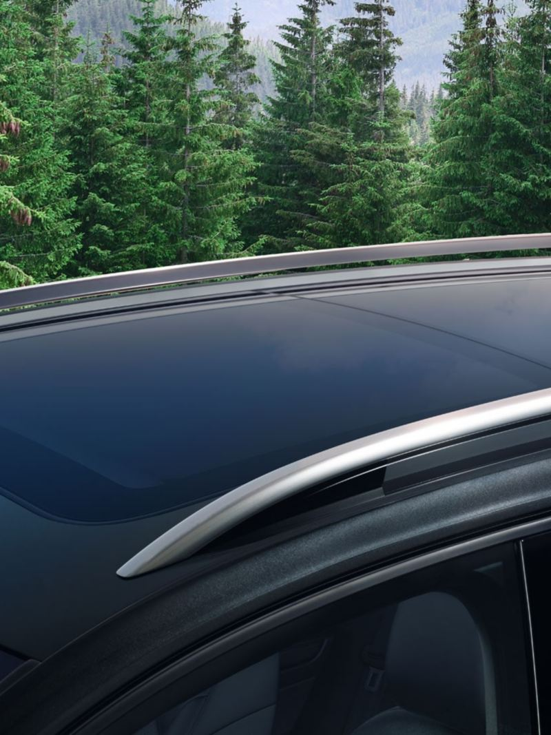 Roof rails on the Golf Alltrack