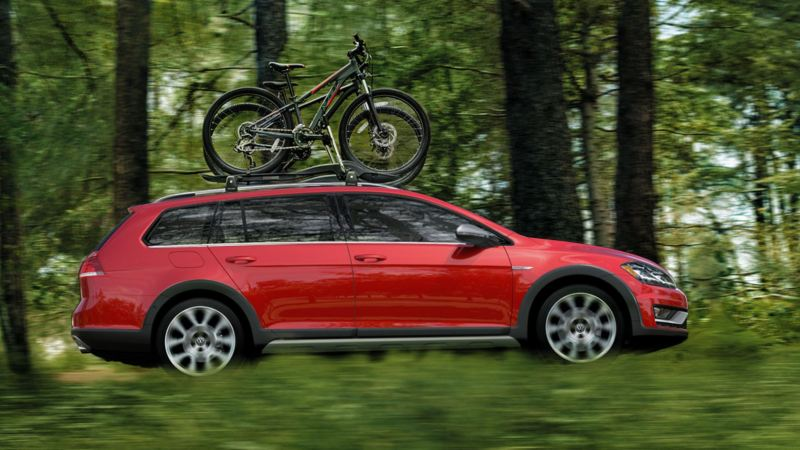 Golf Alltrack driving in the forest