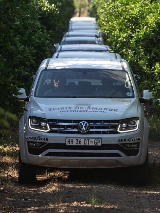 Mehrere weiße Amaroks fahren im Konvoi durch eine südafrikanische Buschlandschaft.