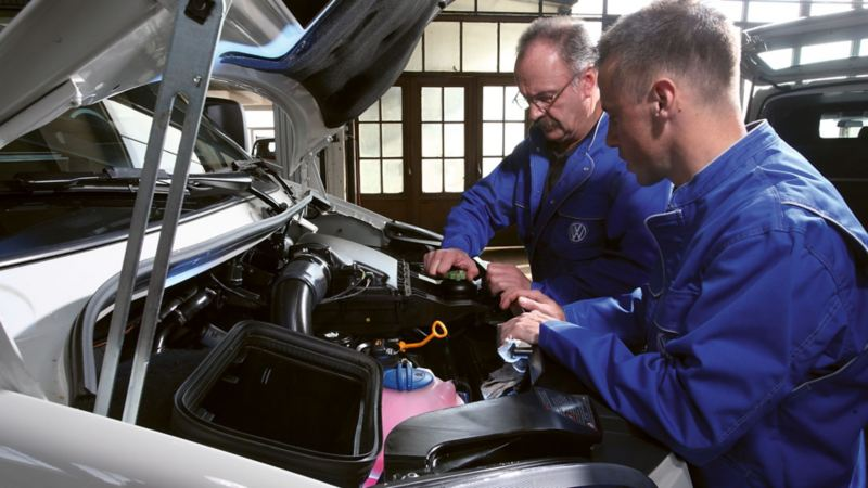 Recrutement Volkswagen Véhicules Utilitaires