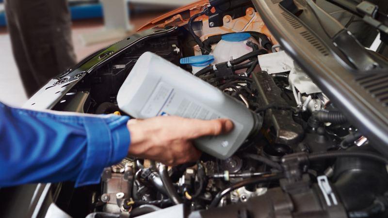 Ręka Partnera Serwisowego Volkswagena uzupełniającego olej.