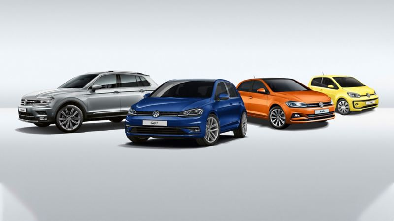 All VW Models