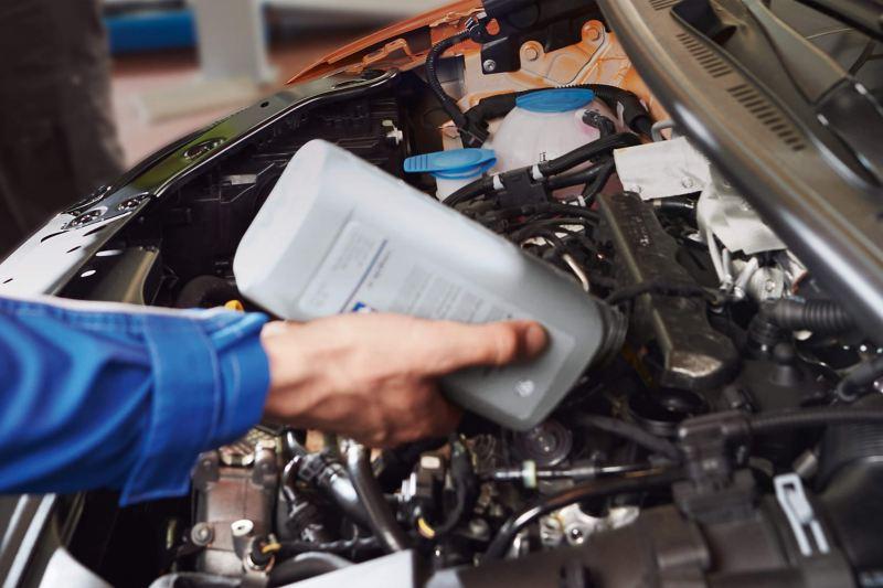 Technician pouring fluids into VW van engine