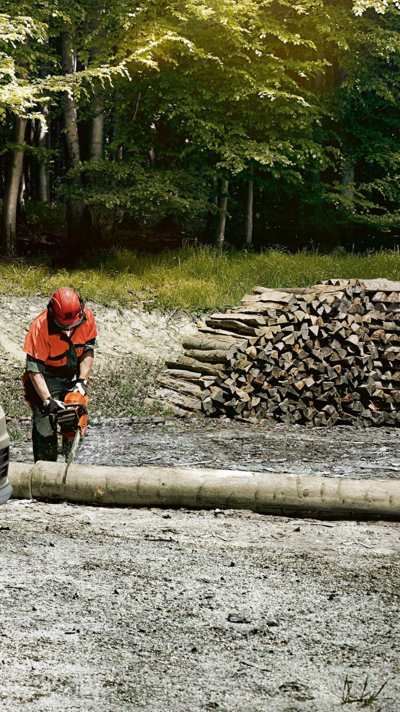 Caddy Kastenwagen Alltrack im Wald mit Waldarbeitern