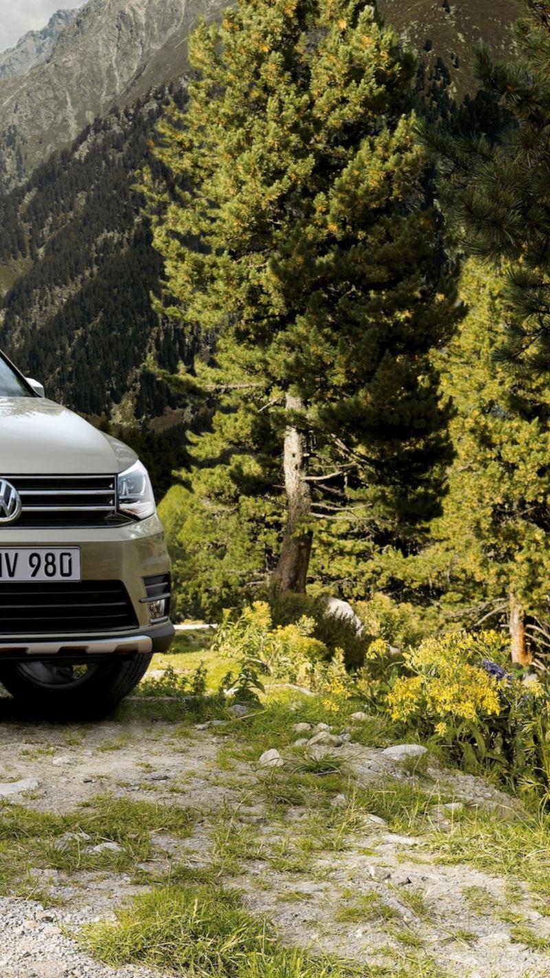 Caddy Volkswagen Canarias