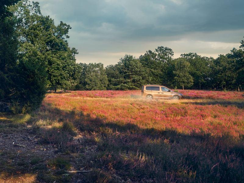 Uma Volkswagen Caddy numa estrada rural.
