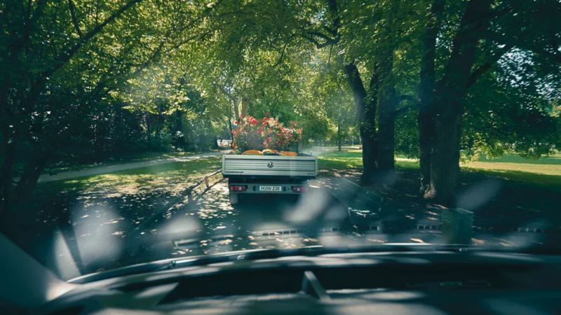 Un camion avec des fleurs dessus dans une forêt
