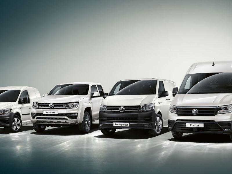 All VW Models