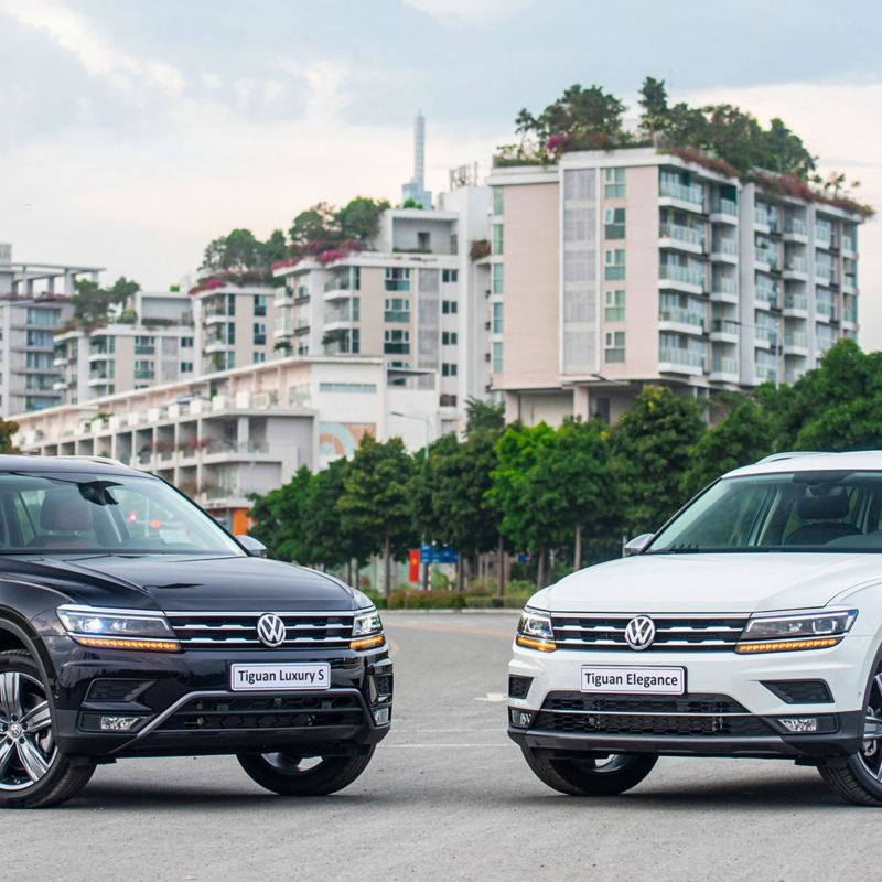 VW Tiguan Elegance và VW Tiguan Luxury