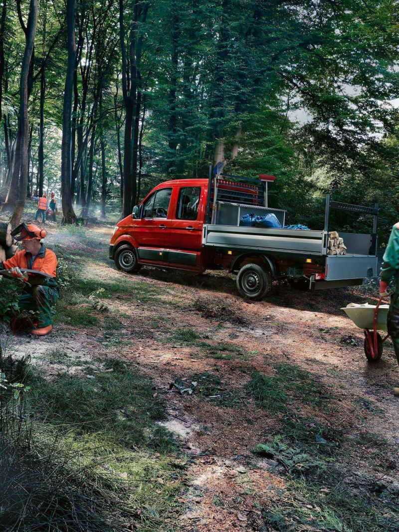 Ein Crafter Pritschenwagen von schräg hinten im Wald.