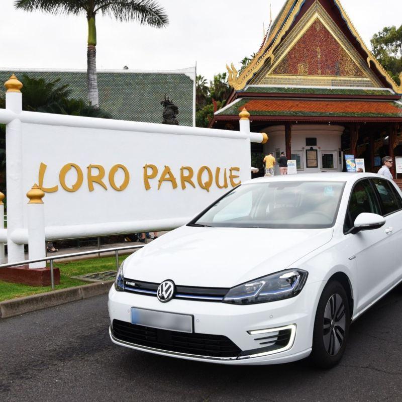 e-golf Loro Parque