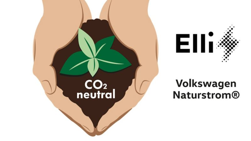 Illustration zweier Händen, die eine Pflanze mit Erde halten, daneben ein Elli-Logo