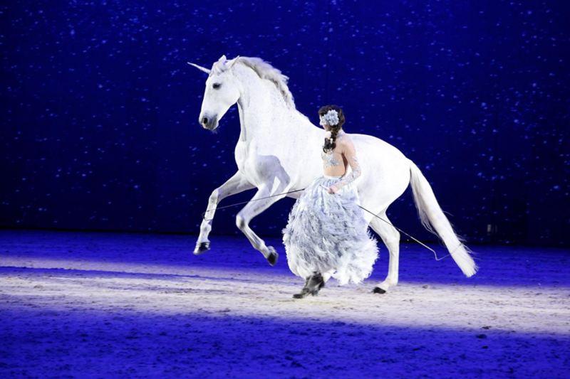 Alizée Froment bjöd på frihetsdressyr med hästen Sultan på Friends Arena