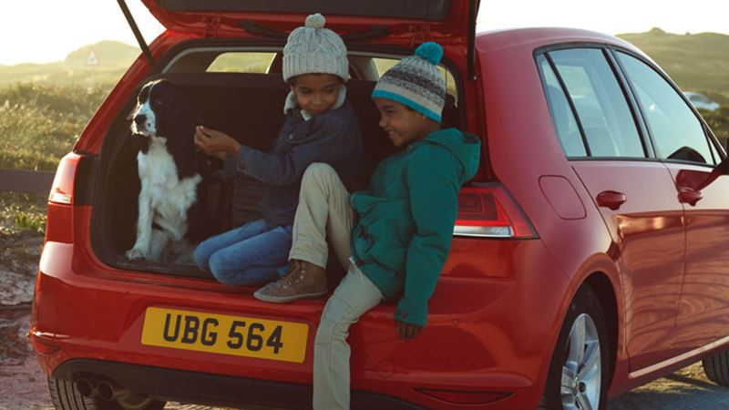Two children and a dog sat in the boot a red Volkswagen Golf.