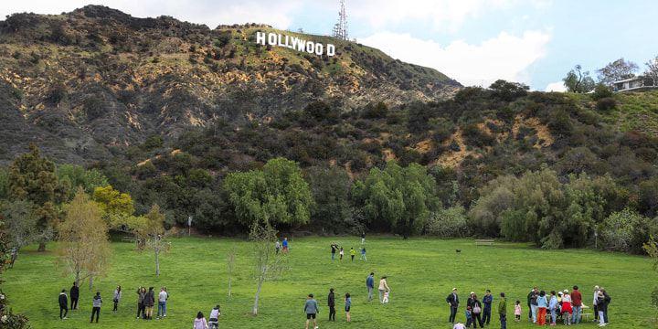 As pessoas estão num prado verde, ao fundo, o letreiro de Hollywood.