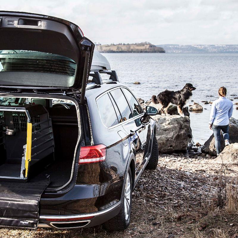 Volkswagen bil med hundbur. Hund och ägare står bredvid och ser ut över havet.