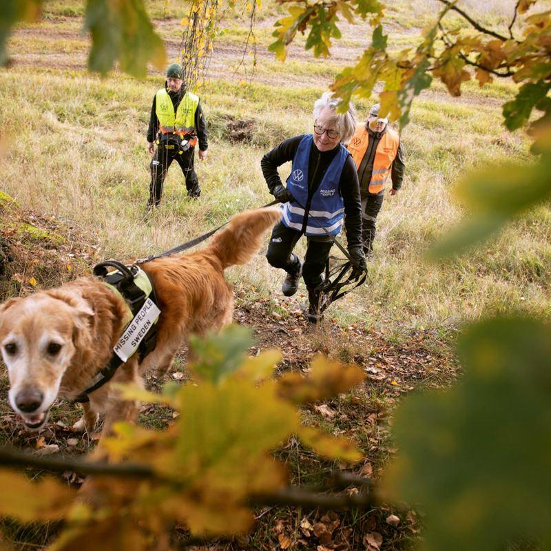 Biggan Ljungberg och hennes åttaåriga jaktgolden Toxic genomför sök för Missing People