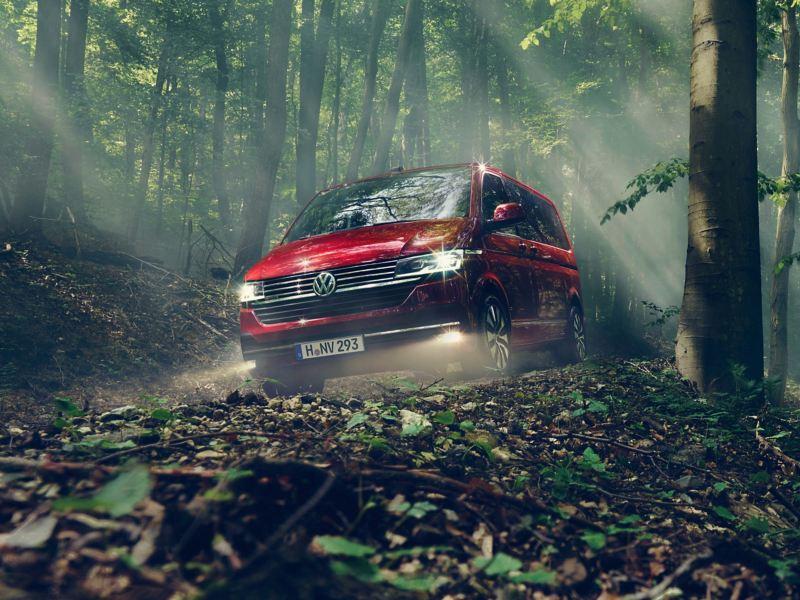 Ein roter Multivan 6.1 fährt durch den Wald.
