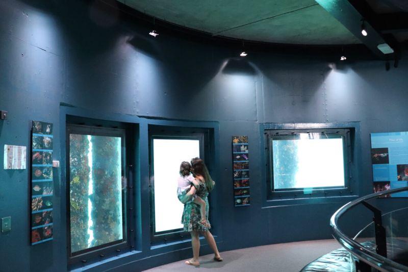 mum-and-child-in-aquarium