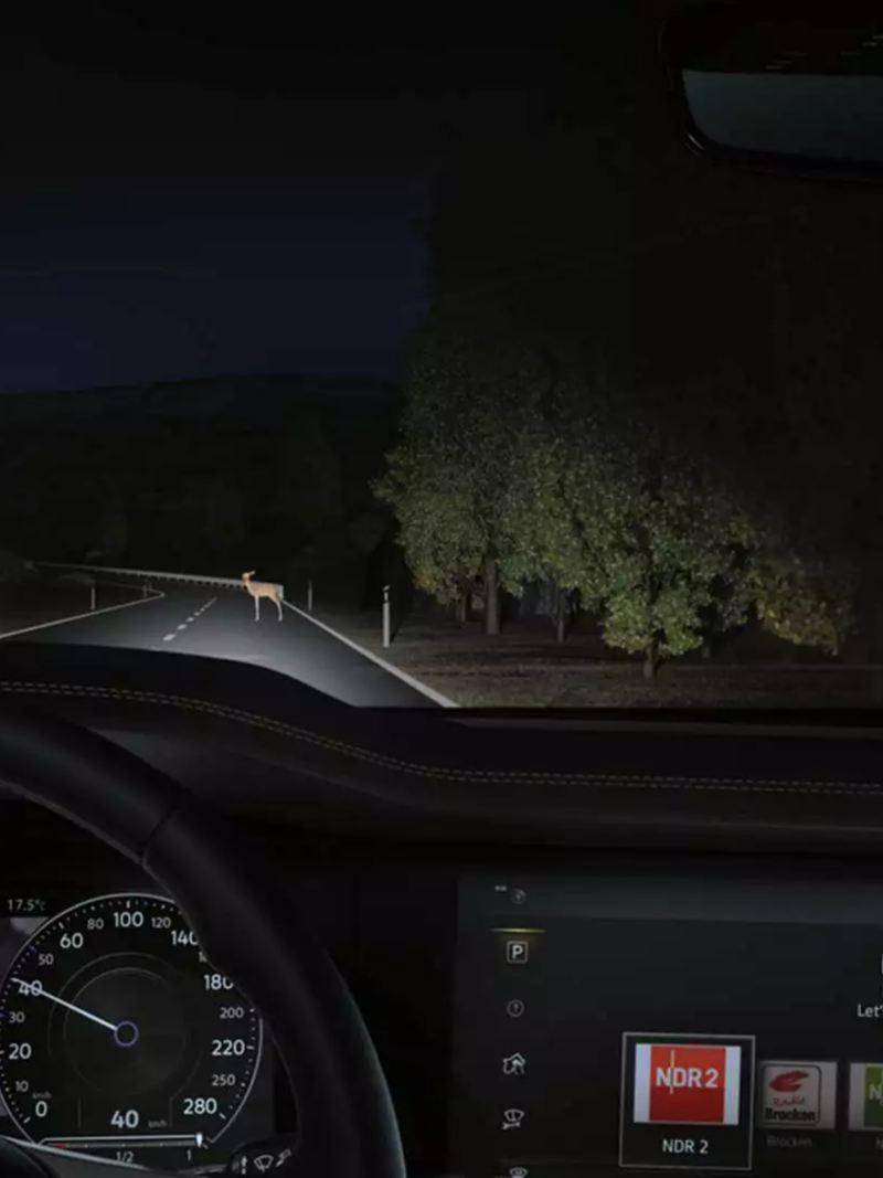 Night Vision Touareg