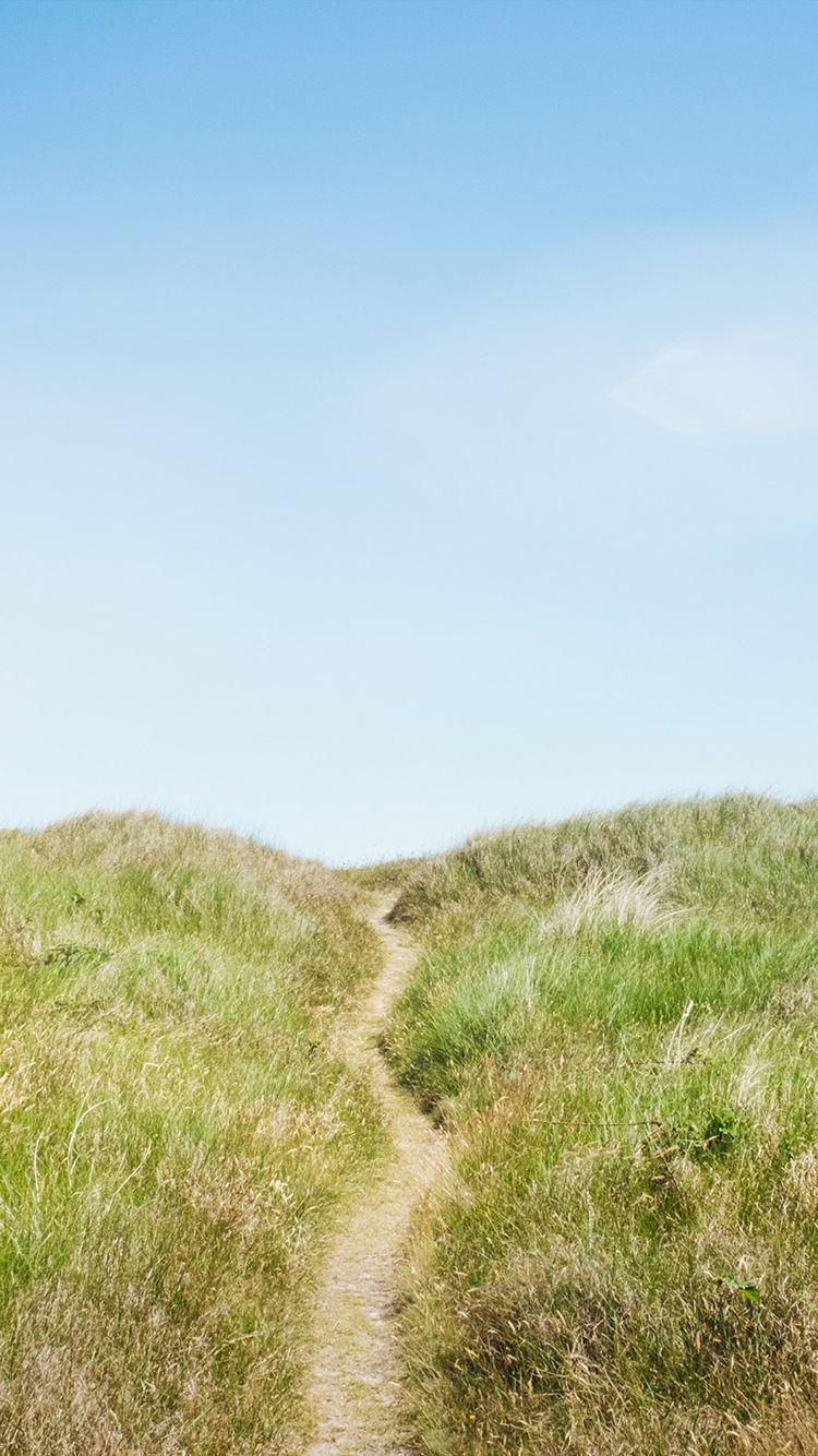 Trampelpfad durch einen Dünenlandschaft