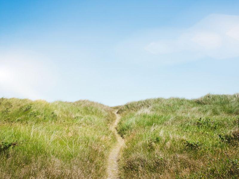 Sentiero che attraversa delle dune erbose