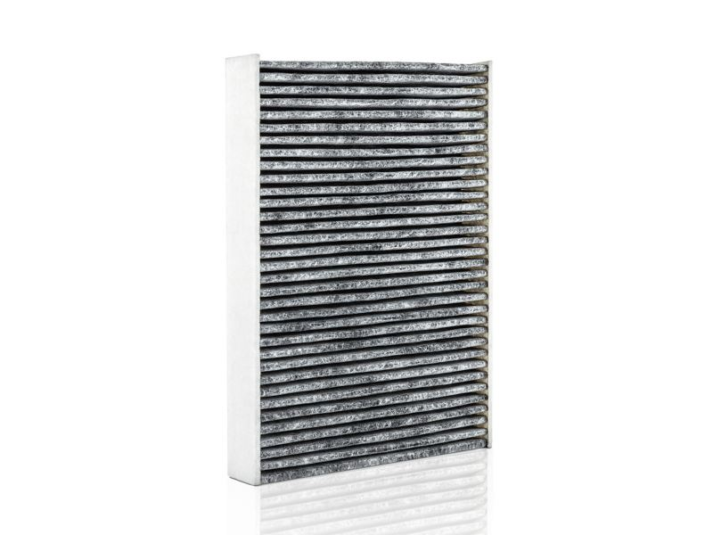 Image of a Genuine Cabin Filter