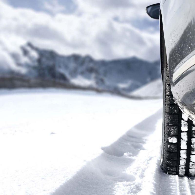 Z zimą nam po drodze