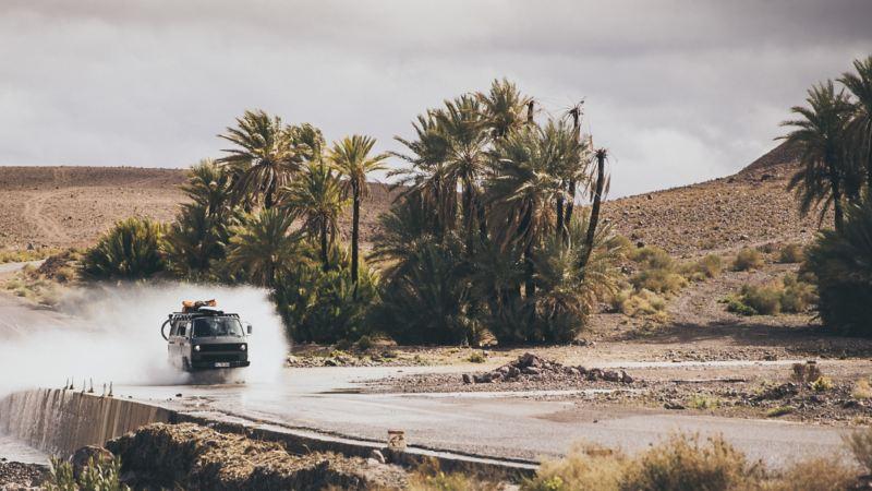 Rob Herans T3-busje rijdt door een waterplas. Op de achtergrond zijn palmbomen te zien.