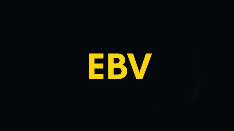 EBV Warnleuchte