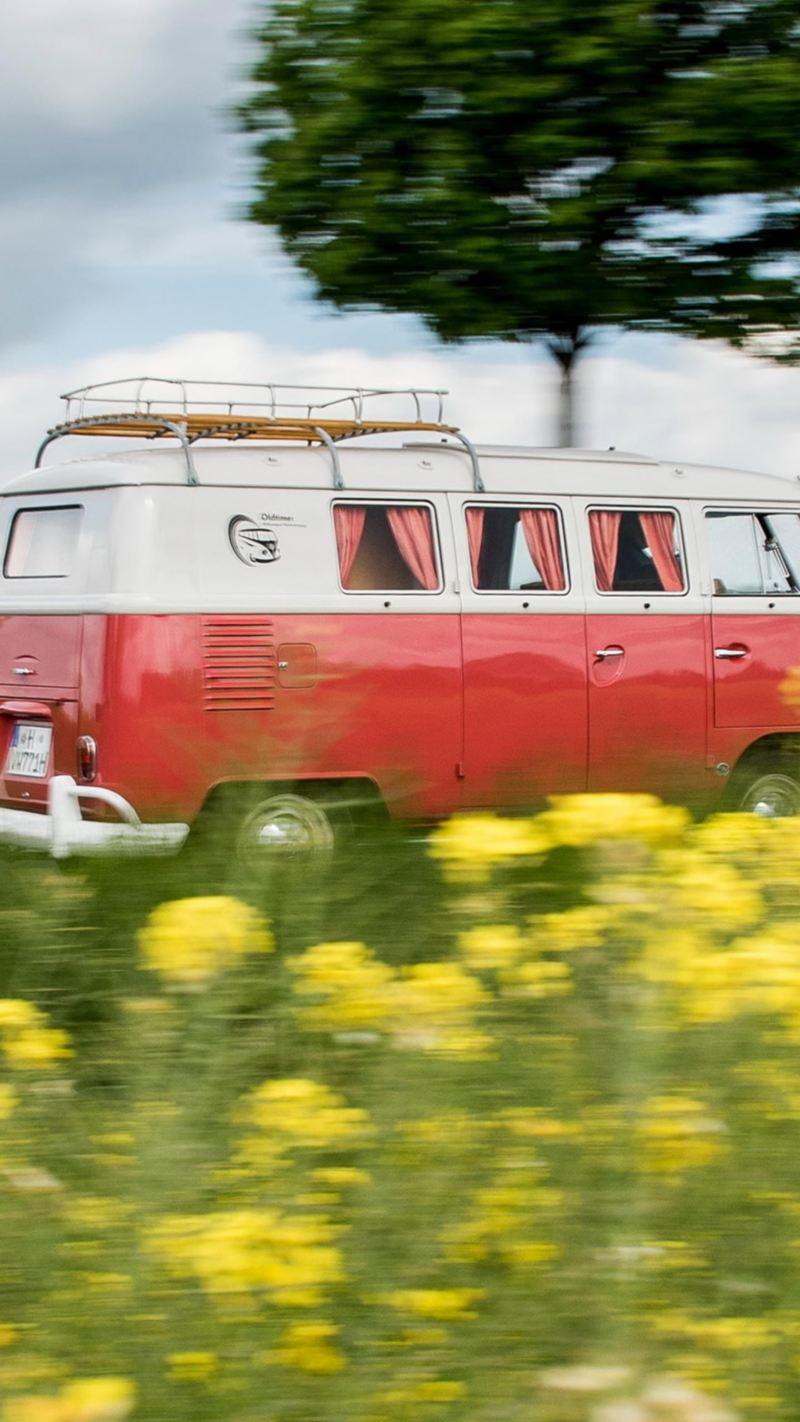 Ein alter VW Bus fährt eine Landstraße entlang.