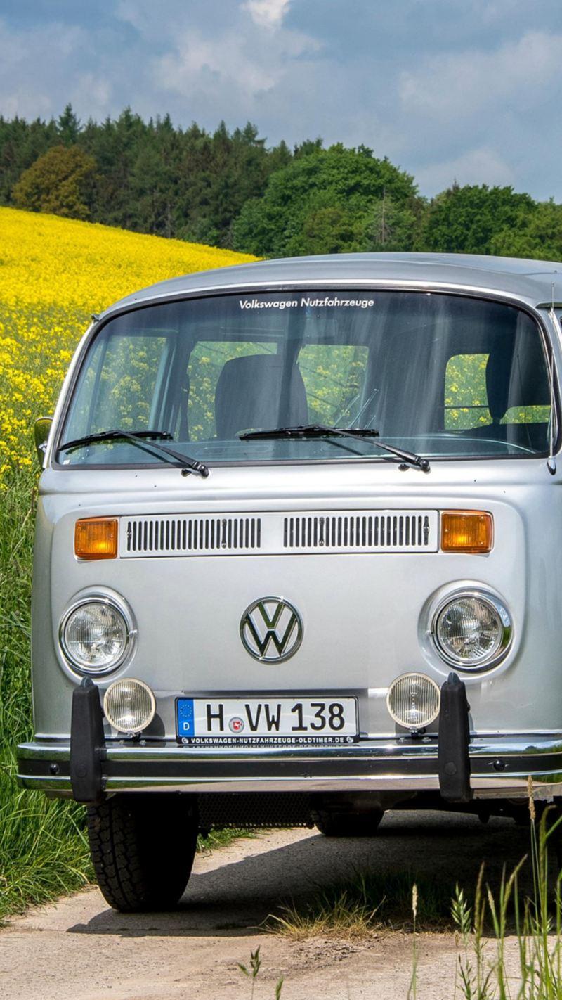 Zwei alte VW Busse fahren durch blühende Landschaften.