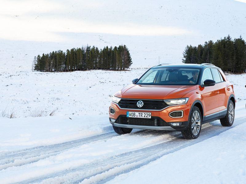 Volkswagen T-Roc naranja y negro detenido en un camino en la nieve mientras el conductor observa un ciervo