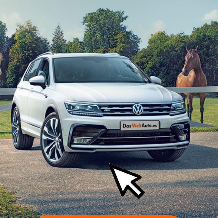 Volkswagen Tiguan blanco visto de frente aparcado en el campo junto a un caballo