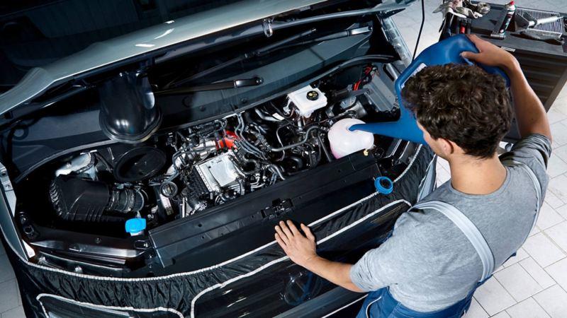 Servicio a motor de vehículo