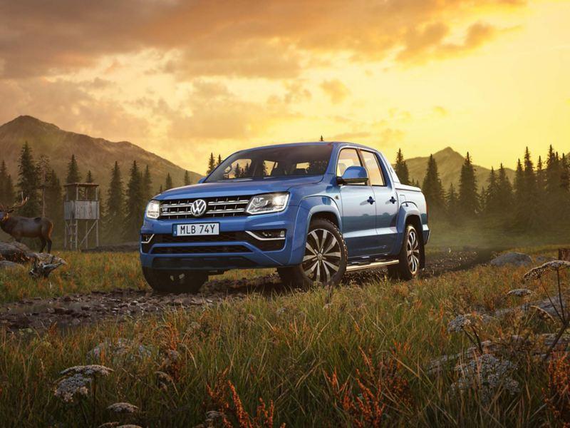 Blå VW Amarok pickup i vildmarken