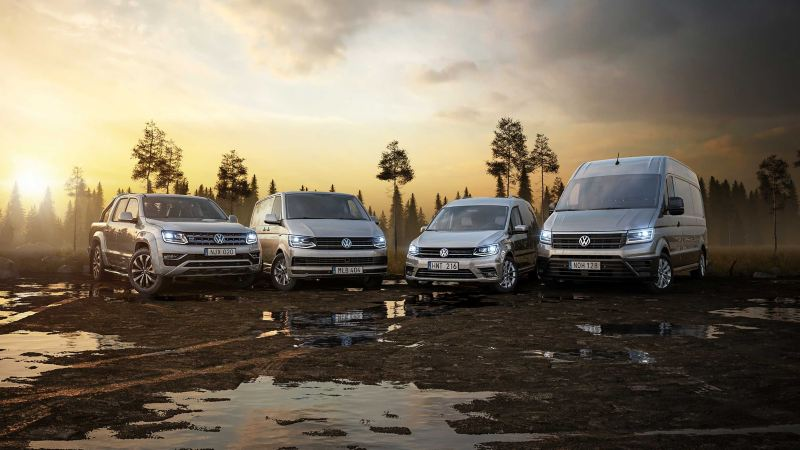 VW transportbilars modeller i träskmark