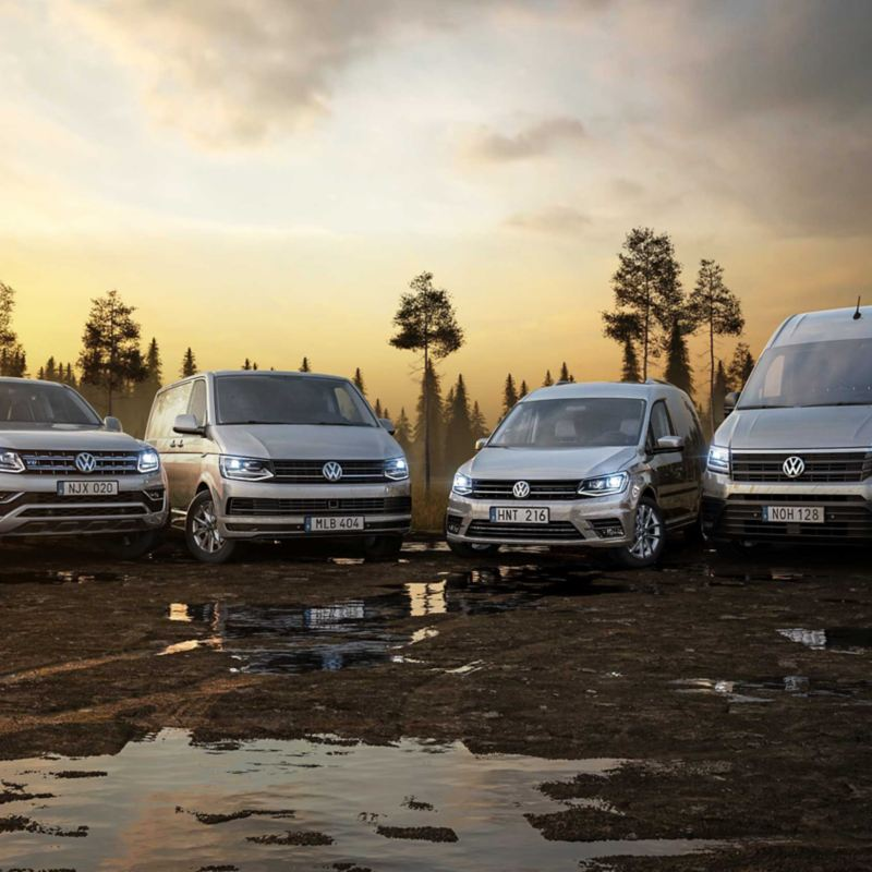 Volkswagen transportbilar samlingsbild
