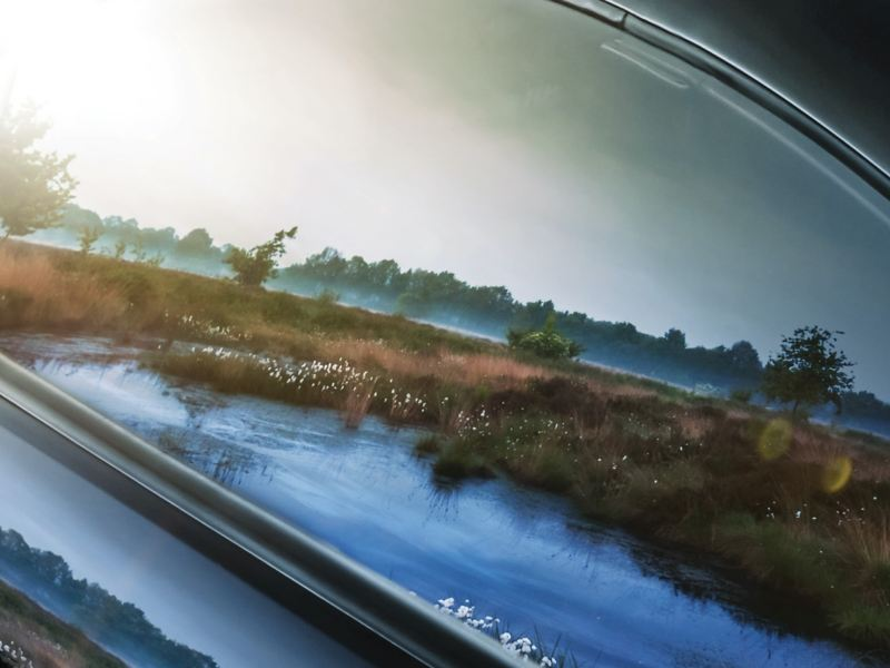 Die Natur spiegelt sich in der Scheibe eines Volkswagen Nutzfahrzeugs.