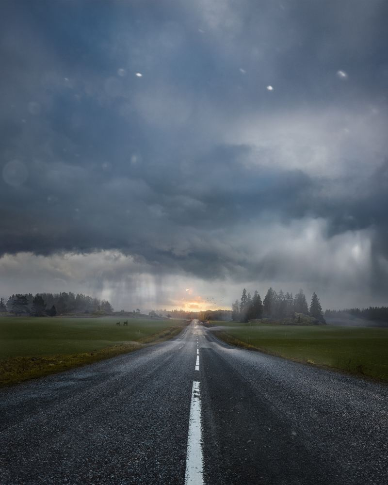 Regnigt sommarlandskap