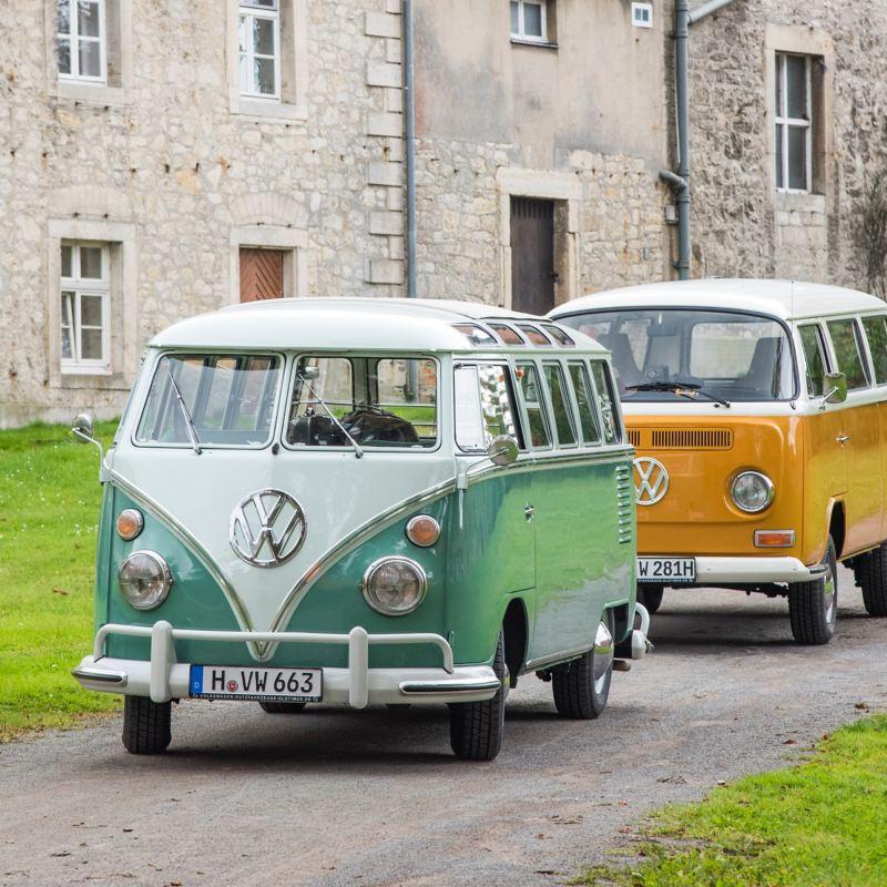 Drei VW Busse fahren eine Landstraße entlang.