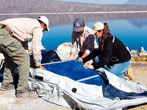 José Alfredo Hernández en investigación conservación de anfibios parte de programa Por Amor a México VW